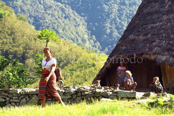 Do you want to explore more of #Flores and love #hiking? Visit Wae Rebo the #last remaining #traditional ethnic village with the Mbaru Tembong houses. Along the way up to the #mountains you'll #enjoy the #beautiful panoramic views, villages and rice fields definitely #breathtaking!