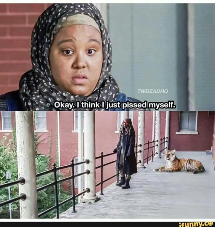 Nabila (Nadine Marissa) wanted to tell King Ezekiel (Khary Payton) about the garden but, becomes afraid of Shiva the Tiger. | The Walking Dead Season 7B Episode 13 'Bury Me Here'