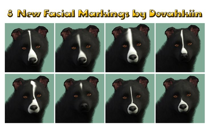 facial markings - by Dova Creations