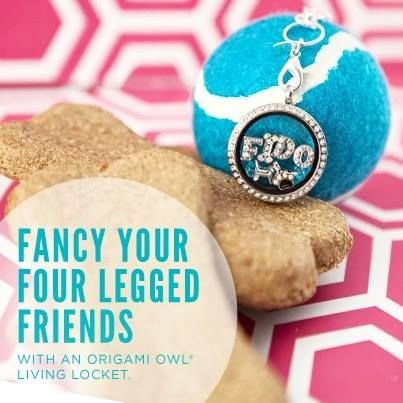 Don't forget, our Origami Owl fundraiser is still on thru May 18th! 10% of all purchases will go directly to our rescue when you buy via this link: http://hootifulcharmlockets.origamiowl.com/parties/abandonedangelscockerspanielrescue335578/collections.ashx These make great gifts for moms, grads, dads, and friends!