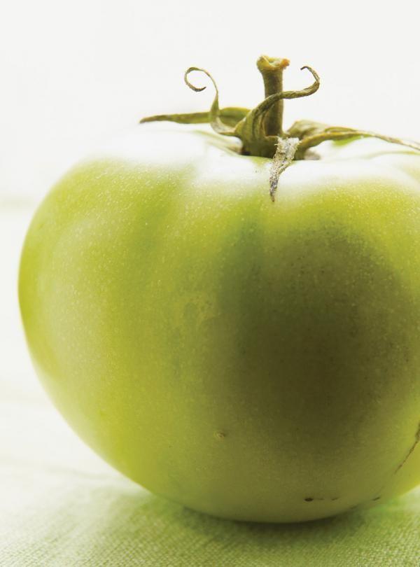 Recette de tomates vertes frites de Ricardo. Recette de légumes pour entrée, accompagnement. Les tomates vertes frites sont cuites dans le gras de bacon, mais on peut tout simplement les cuire dans l'huile.