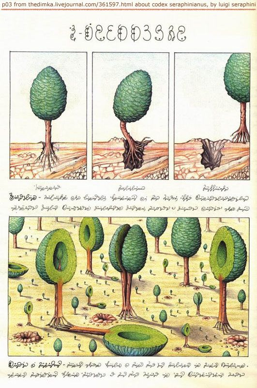 "Page from Codex Seraphinianus: ""an encyclopedia of unknown, parallel world. it's about 360-380 pages. it is written in an unknown language, using an unknown alphabet"" and partially based upon the Voynich Manuscript"