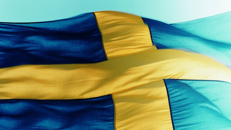 Competitor Safety Ladder sees Swedish amateurs progress to