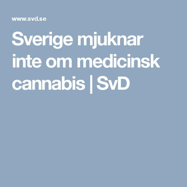 Sverige mjuknar inte om medicinsk cannabis  | SvD