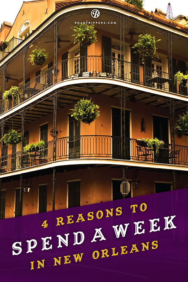 If you're in NOLA here are some places that not only proudly represent the Big Easy, but will also leave you satisfied as only Cajun Country can!