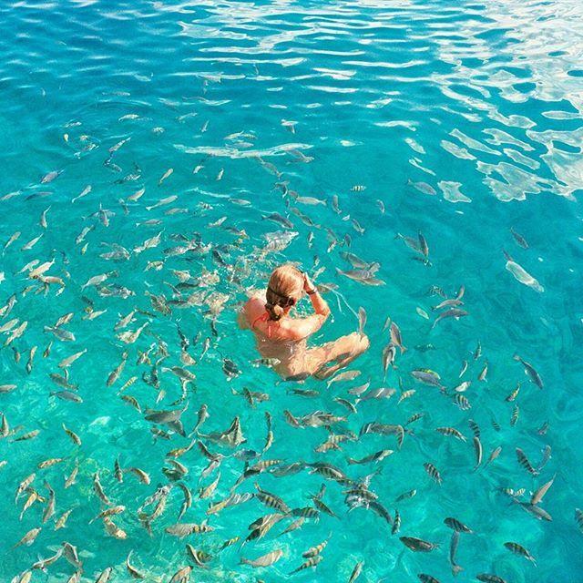 Really love this place !! Take me backkk !!! #sanandres #island #lapiscinita #colombia #tb #vscocam #turquoise #caribbean #sea #photooftheday #travel #explore #film #35mm