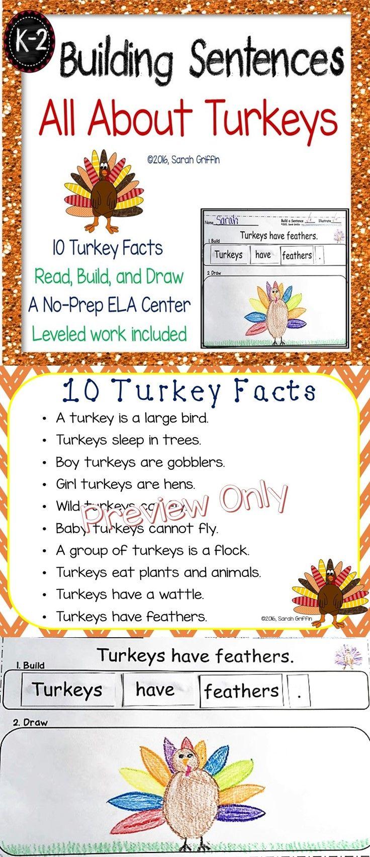 Building Sentences | Turkey facts for kids | Printables | Thanksgiving | Centers | Word Word | Leveled work | No-prep | Writing | Kindergarten | 1st grade | 2nd grade