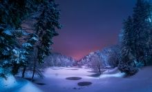 fond écran hd paysage hiver forêt lac gelé nuit arbre enneigé picture image desktop forest lake snow ice night cold landscape wallpaper.jpg