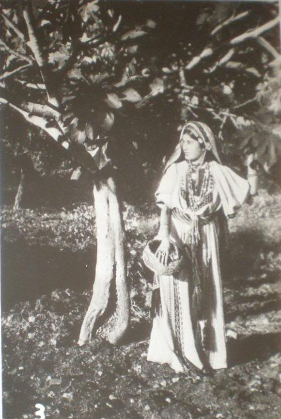 Ramallah-رام الله: Ramallah woman dressed in traditional Thobe under a fig tree, 1920s