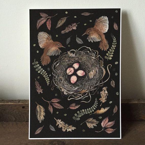 Wren Nest Giclee A4 print  woodland birds by thefloralfoxart