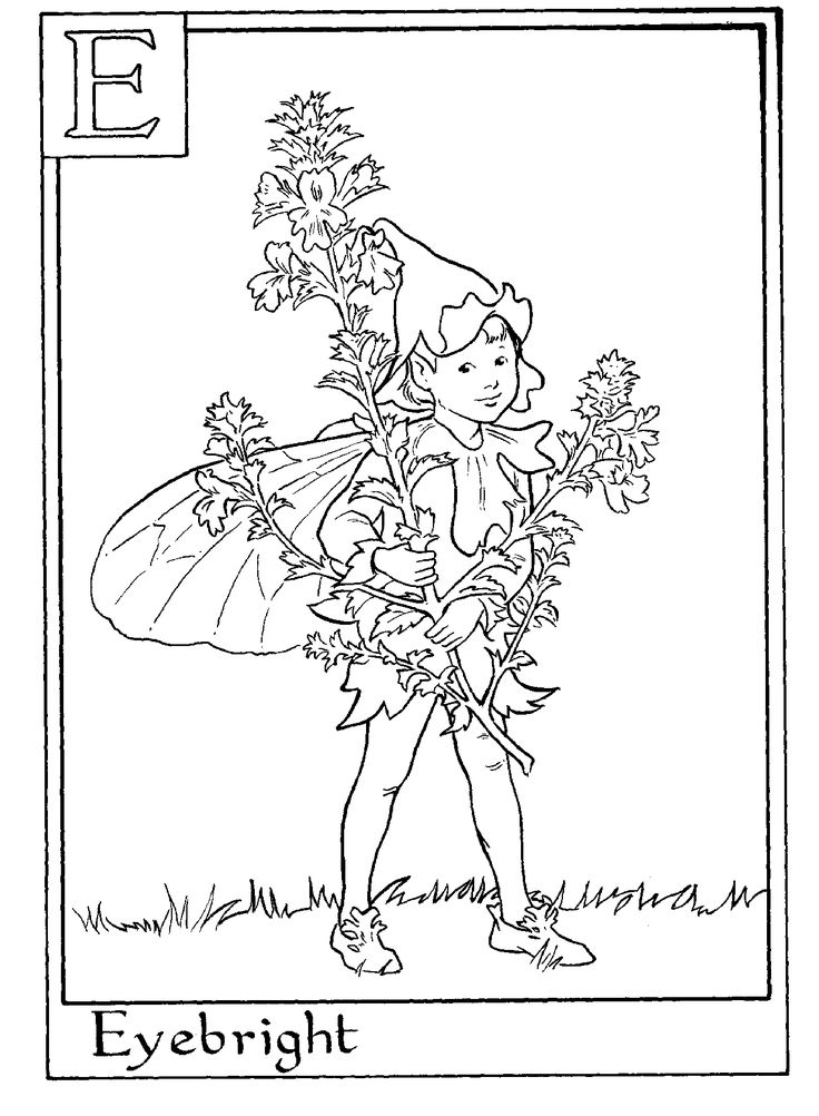 flower fairies coloring pages from wwwcoloring pages and morecome_fairy