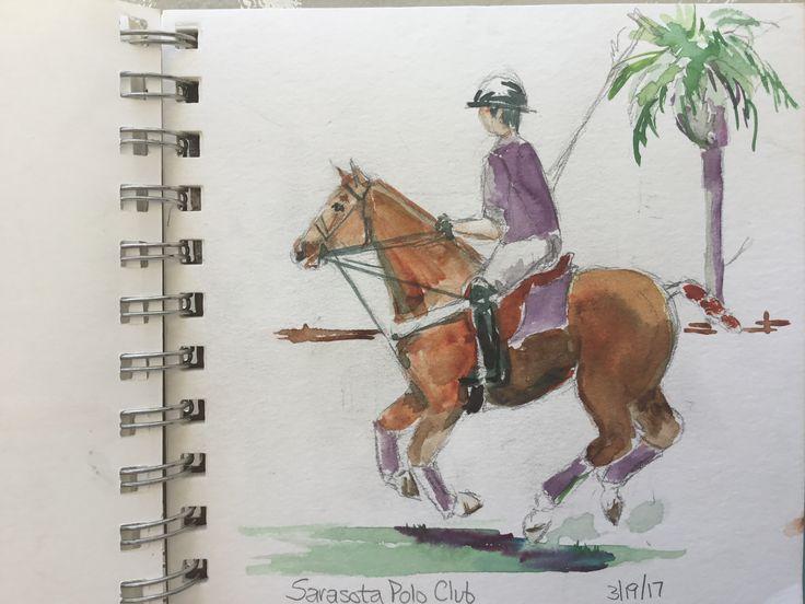 polo sketch, horse, horses, polo, watercolor, polo pony, polo player