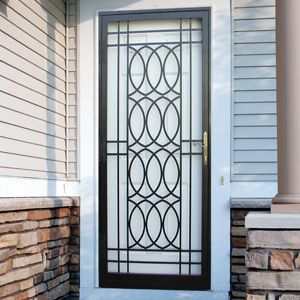 Security Storm Doors 25+ best security storm doors ideas on pinterest | custom storm