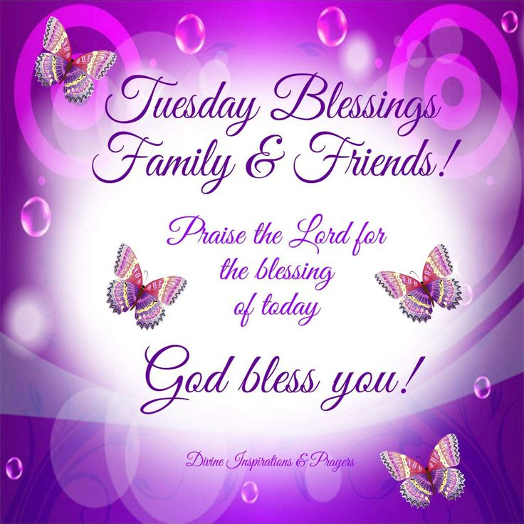 786 best tuesday blessingsgreetings images on pinterest tuesday tuesday blessings family friends god bless you day good morning tuesday tuesday quotes tuesday blessings tuesday images good morning tuesday tuesday m4hsunfo