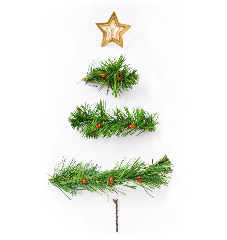 Navidad Maranta