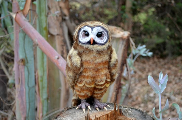 Needle felted Spotted Owl