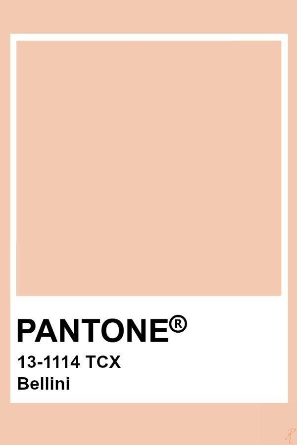 Virginie Zefirs Feng Shui Virginie De Zefirs Instagram Photos And Videos In 2020 Pantone Colour Palettes Pantone Palette Pantone Color