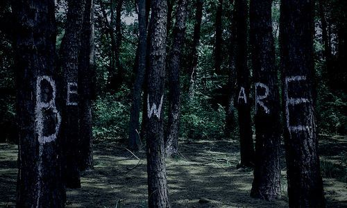 laudanumandarsenic:    deepdarkwoods: hexenhaus: rainbowsandwitheringwinters: loveyourchaos: roguestatus-: jamjars: (via -thisisyourbaptism, volcanic-)
