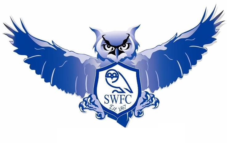 SWFC Owl