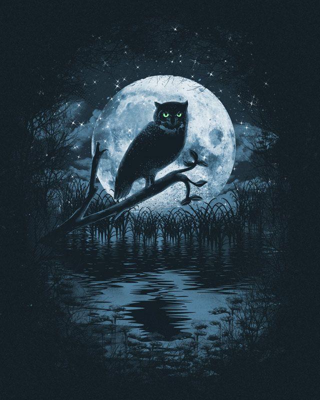 Owl Moon by dandingeroz.deviantart.com on @DeviantArt