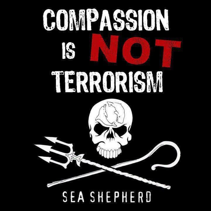 SEA SHEPHERD - Our mission is to end destruction of habitat & slaughter of wildlife in the world's oceans to conserve and protect ecosystems & species. SSCS uses innovative direct-action tactics to investigate, document, and take action when necessary to expose & confront illegal activities on the high seas. By safeguarding the biodiversity of our delicately balanced ocean ecosystems, SSCS works to ensure their survival for future generations.