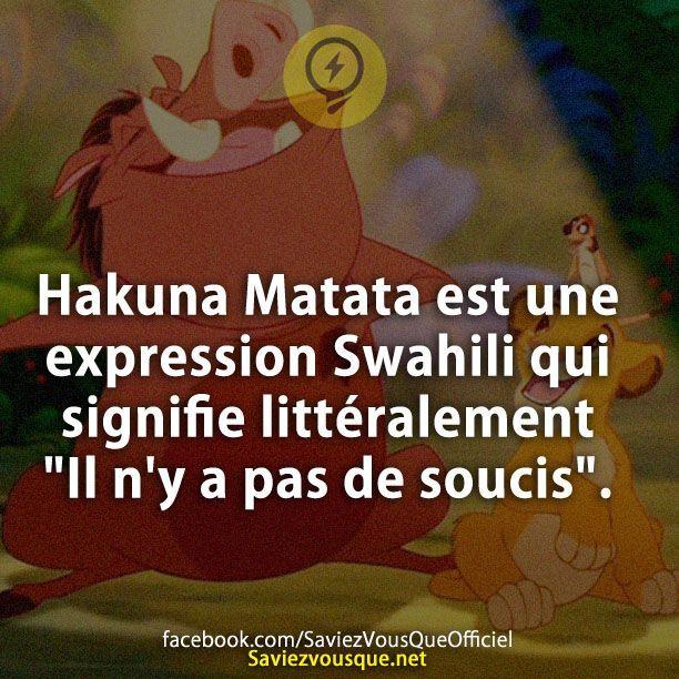 """Hakuna Matata est une expression Swahili qui signifie littéralement """"Il n'y a pas de soucis"""".   Saviez Vous Que?"""