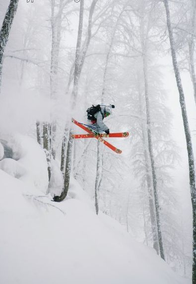 The Best Tree Skiing In The World | http://blog.worldweatheronline.com/2013/12/17/oh-weather-outside-frightful-ski-weather-delightful-2/