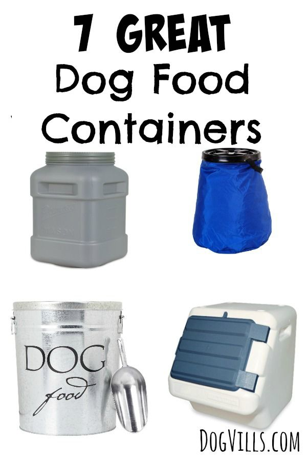 Check out these 7 Great Dog Food Containers for storing your pet's food! Our containers range from stylish to functional, but all work perfect for keeping food fresh!