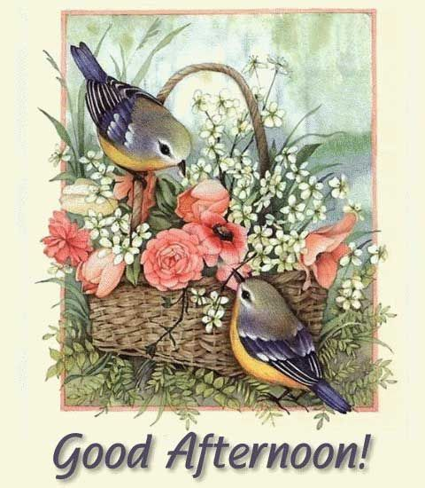 cute good afternoon images for gooogle plus 4
