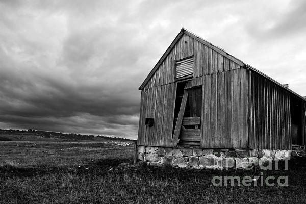 Rustic Ruins Of An Old Abandoned Wooden Shed Decay In A Tasmanian (Australia) Farm Field, While Fierce Rain Clouds Form In The Skies Above by Ryan Jorgensen