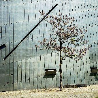 Mariusz Sikorski, Berlin 02, WallArtNow gallery