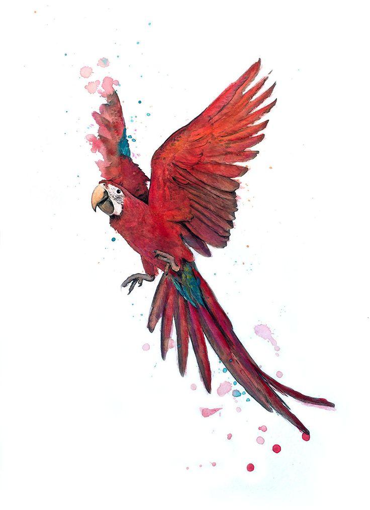 Best 25 pastel crayons ideas on pinterest oil pastel - Perroquet dessin ...