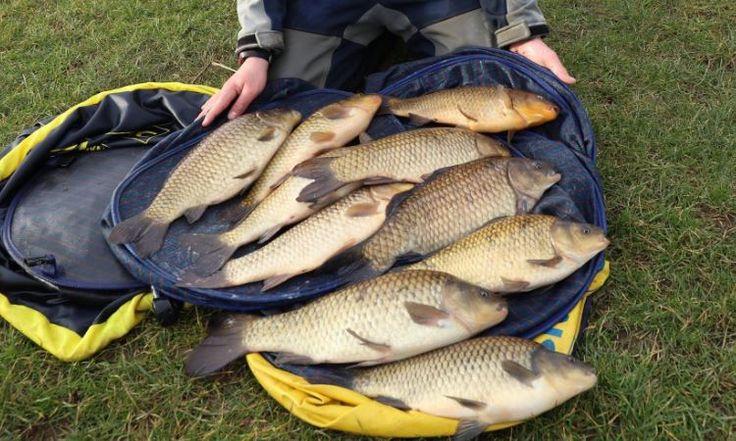 Manor Farm Leisure Havington, Evesham, Worcestershire, UK, England. Campsite. Camping. Outdoors. Holiday. Outdoors Holiday. Travel. Fishing.