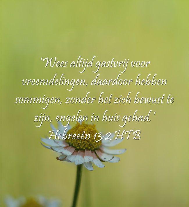 'Wees altijd gastvrij voor vreemdelingen, daardoor hebben sommigen, zonder het zich bewust te zijn, engelen in huis gehad.' Hebreeën 13:2 HTB