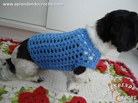 Roupinha de Croche Cãozinho Fashion - Aprendendo Crochê