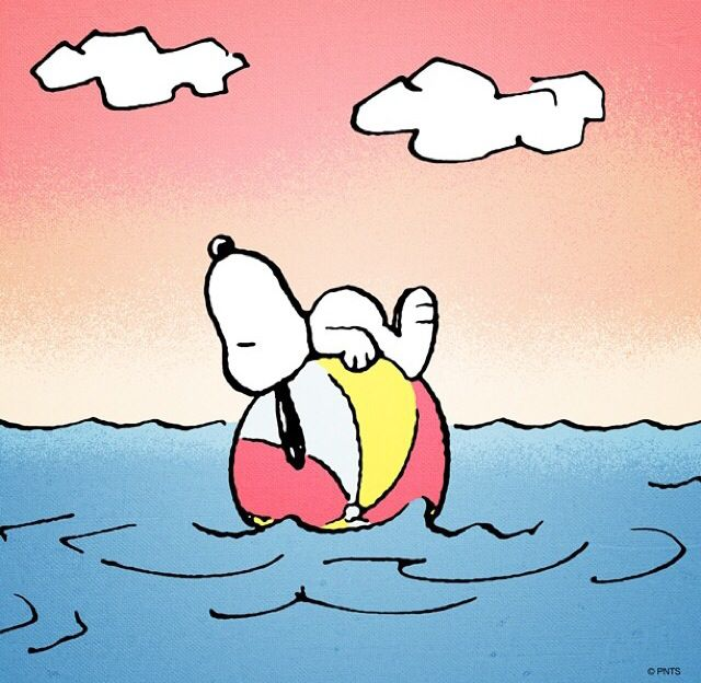 46 Best Snoopy Summer Images On Pinterest