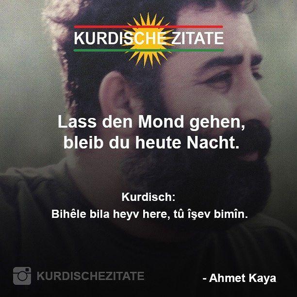 @kngctn ◀ Folgen.  Markiert eure Freunde. _ #Kurdistan #Kurd #Kurdish #KurdischeZitate #Zitate #InstaKurd #Kurdi #quotes #Kurden #Kobane #HDP #Mardin #Amed #Başûr #Rojhilat #Rojava #Kurmanci #Dersim #Kerkuk #Aleppo #KurdishQuotes #FreeKurdistan #AhmetKaya #Ahmet #Kaya #AhmetKayaZitate #Sözleri
