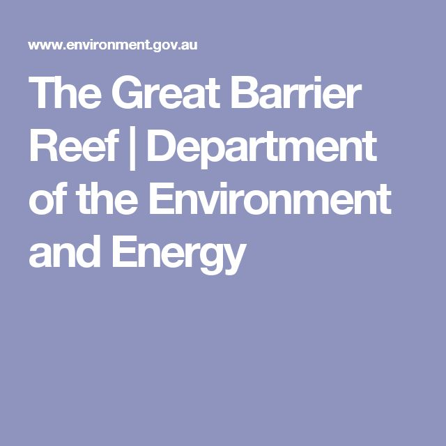 The Great Barrier Reef | Department of the Environment and Energy