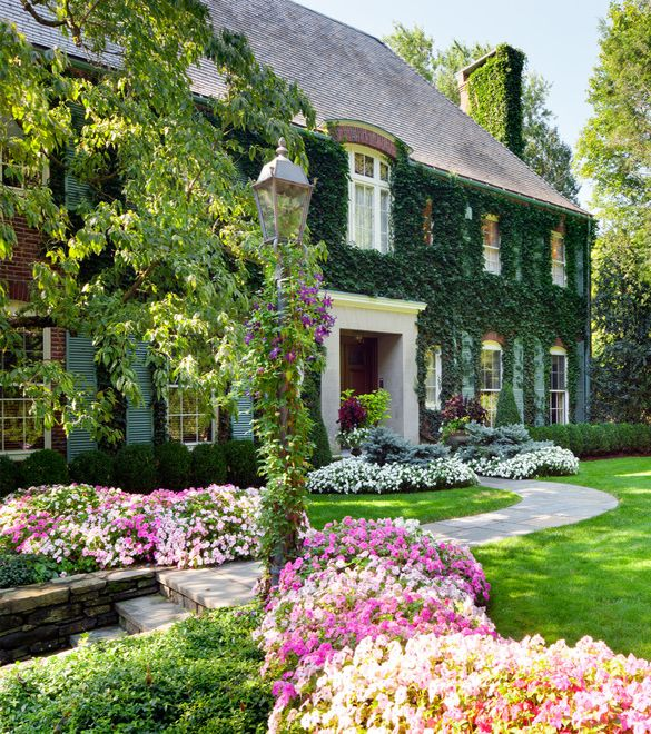 Ivy covered house, great landscaping