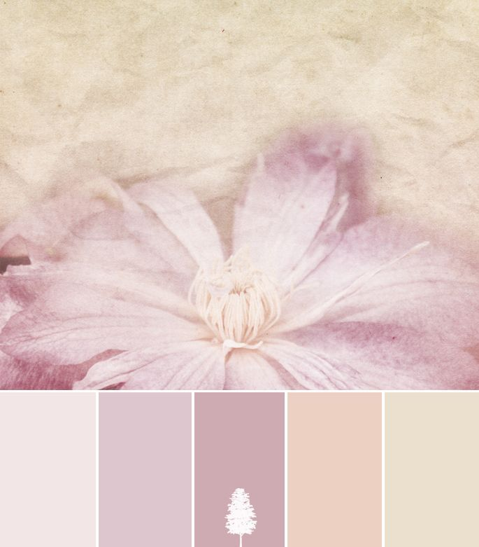 possible branding palette || Color Palette: Shabby Vintage