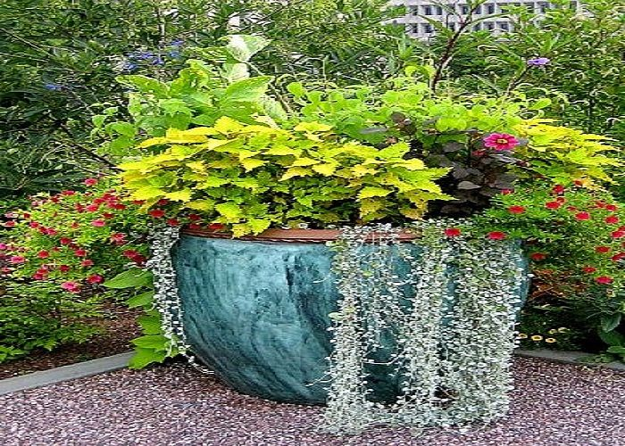 98 best images about flower pot gardens on pinterest for Garden design ideas with pots