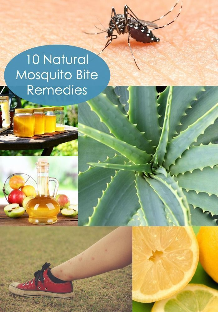 10 natural mosquito bite remedies - learn how to stop the itch with items you have around the house. NO chemicals! Perfect for sensitive skin.