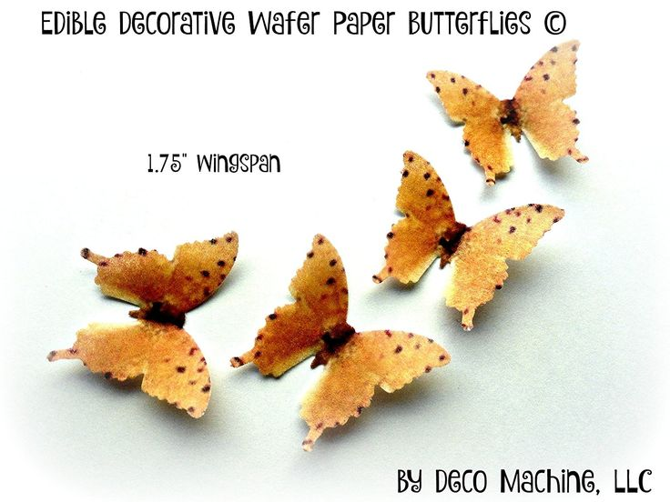 """Amazon.com: 24 ORANGE Small 1.75"""" Edible Image Decorative Wafer Paper Butterflies © Butterfly Wedding Cake Cupcake Topper: Everything Else"""