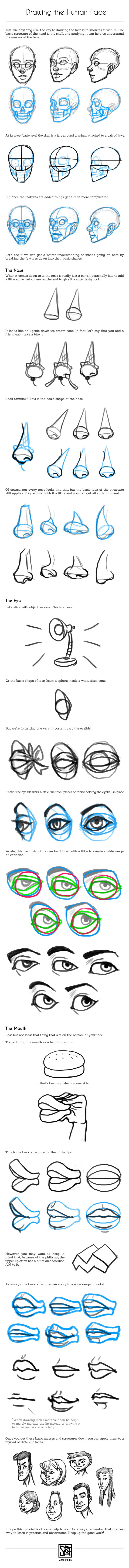 Drawing the Human Face Tutorial by SarahCulture