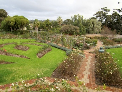 The Rose Gardens & Labyrinth, as Seen From Urrbrae House, South Australia