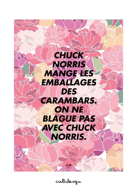 Chuck norris mange les emballages des carambars. On ne blague pas avec chuck norris. // C.N