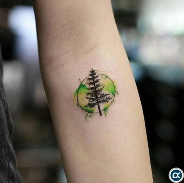 Trees Tattoo 34 Watercolor Tree Tattoo Designs Amazing Tattoo