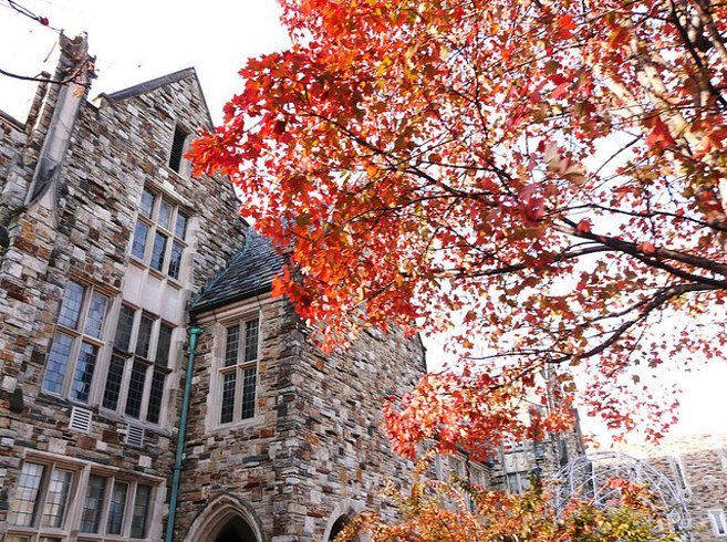 images about college on pinterest   college campus  college    rhodes college  memphis   the  most underrated colleges in america