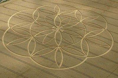 Sacred Geometry Crop Circles