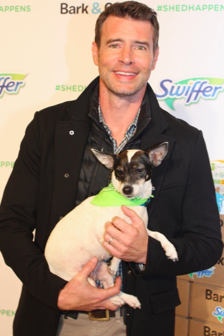 Pin for Later: The Only Thing Cuter Than Scott Foley Is Scott Foley Gushing About His Dog